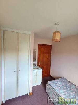 Single room to rent ?385pm  Tara Grove, Galway, Connacht