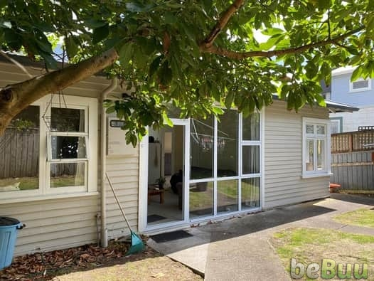 Sunny room in mt cook flat, Wellington, Wellington
