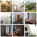 House to Rent, Wellington, Wellington
